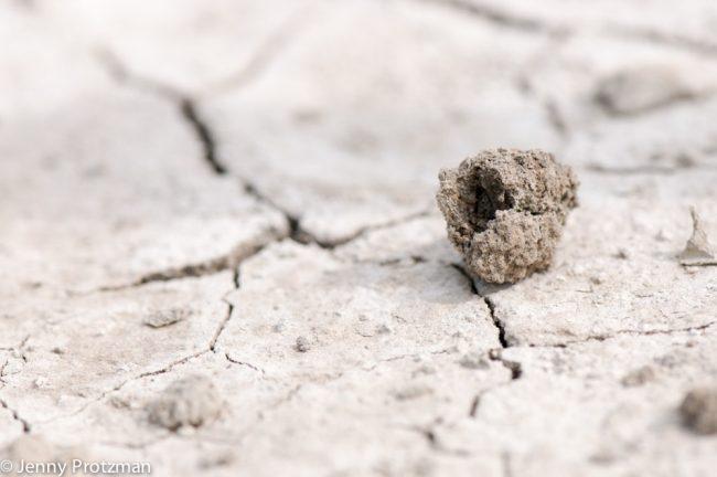 ben ik meer dan een zandkorrel?